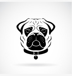 Pug dog face design on white background pet vector
