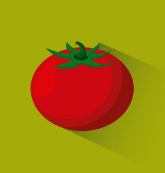 vegetable food icon vector image