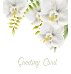 watercolor white orchid flowers greeting card vector image