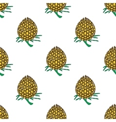 golden young pineapple on light background vector image vector image