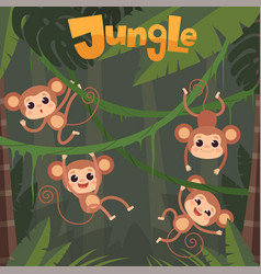 monkey playing little wild animals sitting and vector image