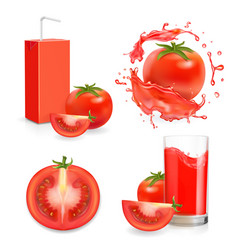 tomato fresh juice with splash and juice package vector image
