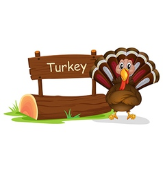 A wooden signboard at the back of a turkey vector image vector image