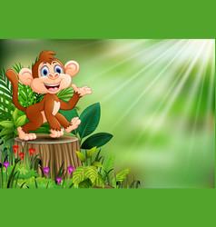 cartoon happy monkey sitting on tree stump with gr vector image