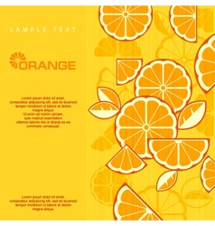 Citrus Fruit Slices vector
