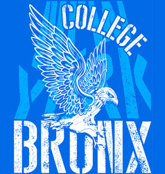 college tee graphic design vector image