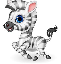 Cute zebra running isolated on white background vector