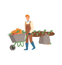 Farmer harvesting on field pumpkins in cart vector