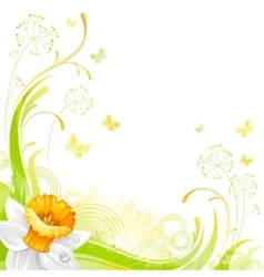 Floral summer background with daffodil flower vector