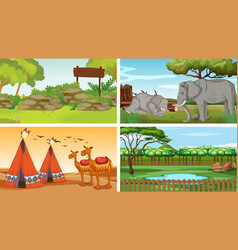 Four scenes with wild animals in parks vector