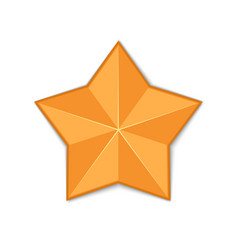 gold star isolated vector image