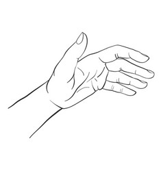 hand drawn woman hand vector image