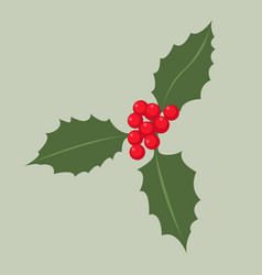 holly-leaves flat vector image