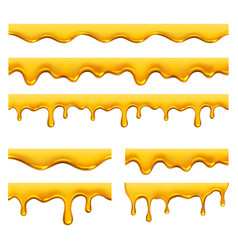 honey dripping yellow syrup liquid golden oil vector image
