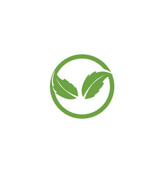 leaf icon design template vector image