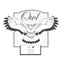 Owl engraving label logo vector