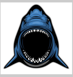shark head isolated on white - emblem for a sport vector image