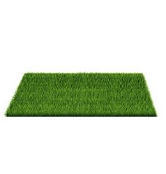 Square green grass field vector