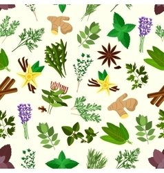 Fresh spicy herbs and condiments seamless pattern vector
