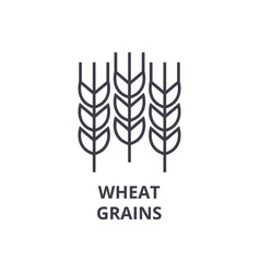 wheat grains line icon outline sign linear vector image