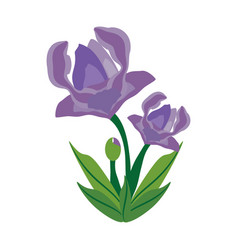 Anemone flower spring image vector