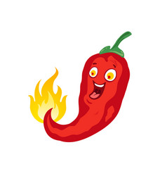chilli for mexican or thai food vector image