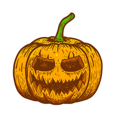 halloween scary pumpkin on white background vector image