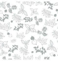 Natural background from the leaves vector