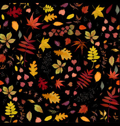 Seamless autumn pattern with fall colorful leaves vector