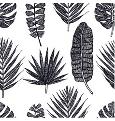 tropical palm leaves black background vector image