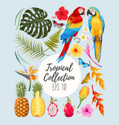 Tropical set vector