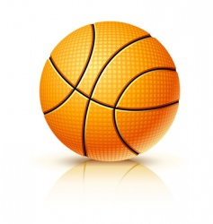 ball for playing basketball game vector image