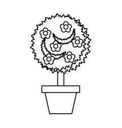 Cute garden flower in pot vector
