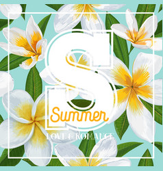 Hello summer tropical background plumeria flowers vector
