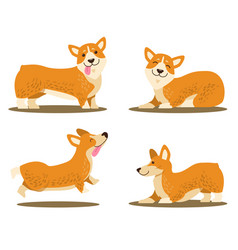 Playing corgi dog set of icons vector