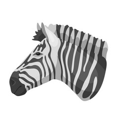 zebra icon in monochrome style isolated on white vector image