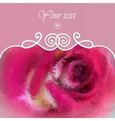 beautiful background with pink rose vector image