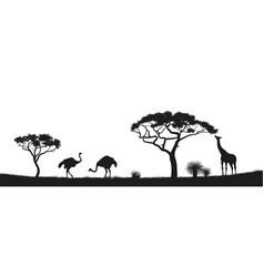 black silhouette ostrich giraffe in savannah vector image