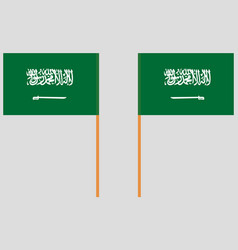 Flag of the kingdom of saudi arabia front and back vector