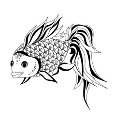 goldfish drawing vector image