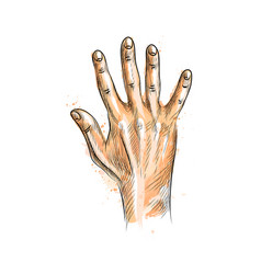 hand showing five fingers from a splash of vector image