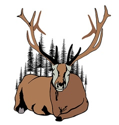 Lying deer and fir trees around him vector