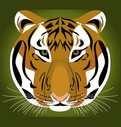 tiger - template design vector image