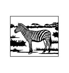 Zebra - savanna africa wildlife wildlife vector