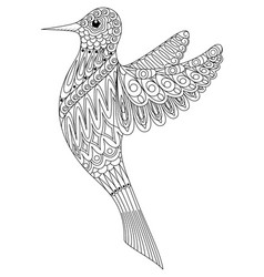 adult coloring book a bird vector image vector image