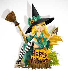 Beautiful young witch with a book and broom vector image vector image