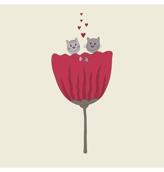 Beautiful couple of cute cats vector image
