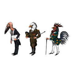 bird man bald eagle and marabou head in military vector image
