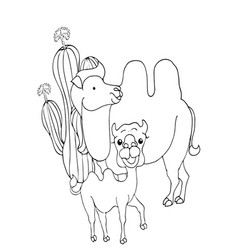 coloring pages animals cute camel stands and vector image