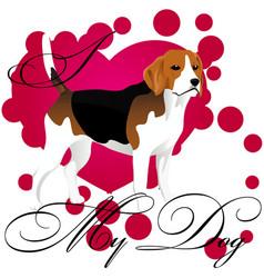 i love my beagle vector image